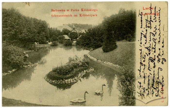Став у Стрийському парку, Фото: lvivcenter.org