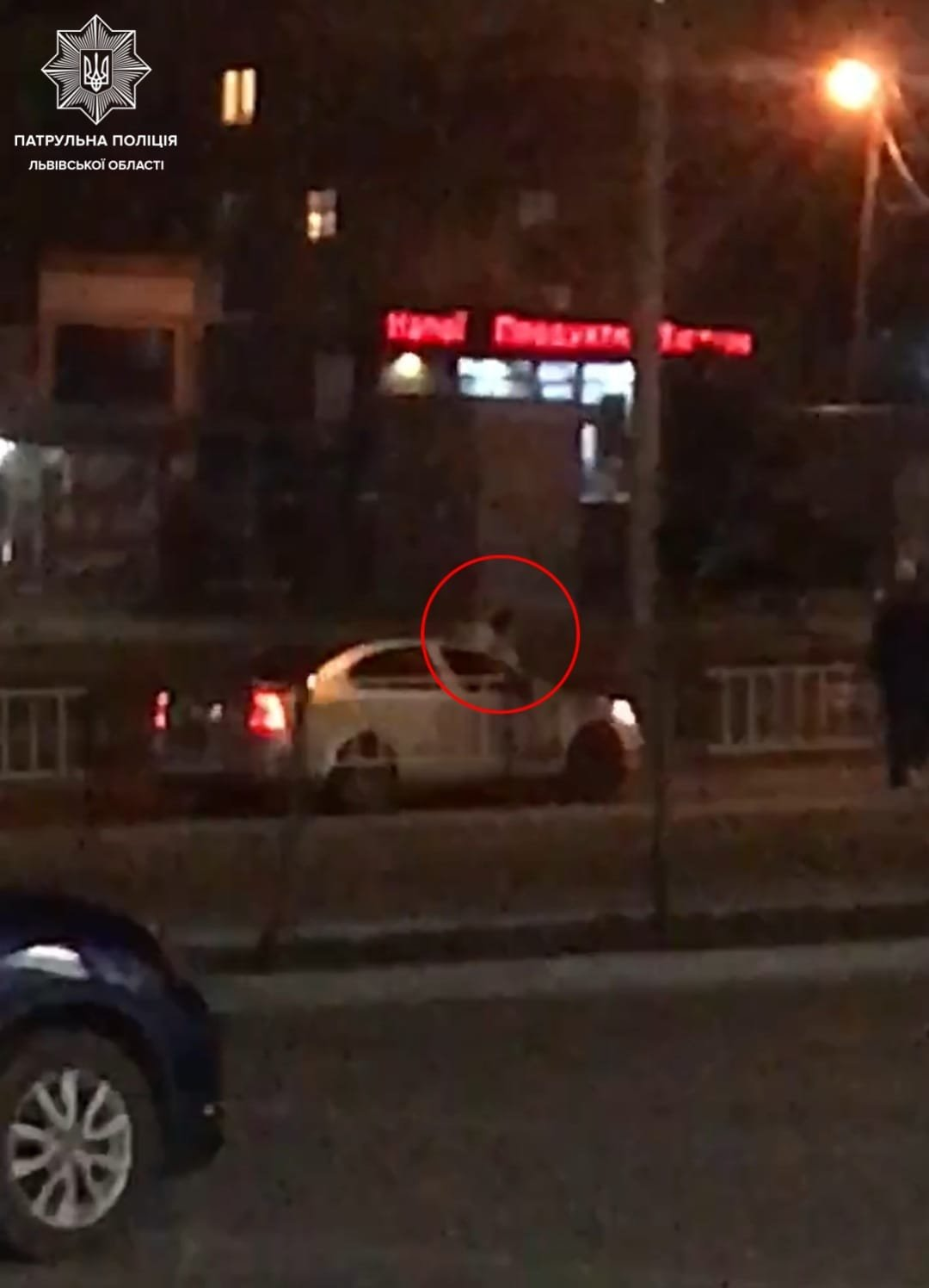 Чоловік у стані наркотичного сп'яніння стрибав на автомобілі під час руху, стоп-кадр з відео очевидців