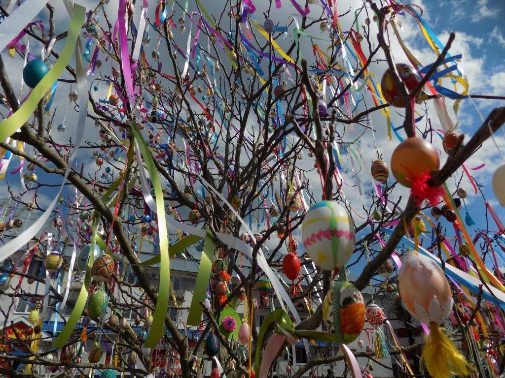 Писанкове дерево, Фото: Бориславська міська рада