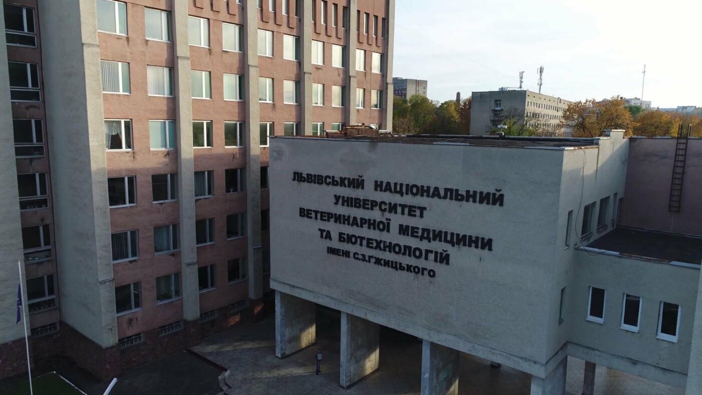 Львівський національний університет ветеринарної медицини та біотехнологій