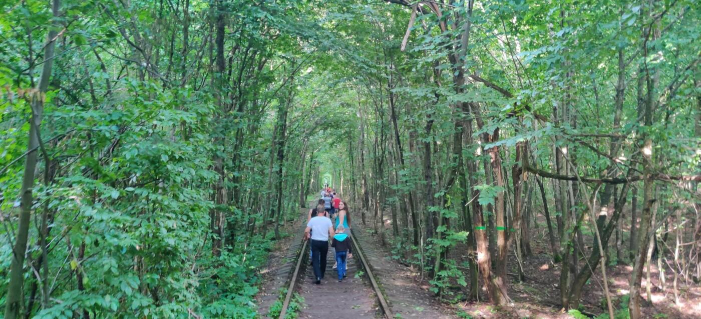 Тунель кохання на Рівненщині, Фото: 032.ua