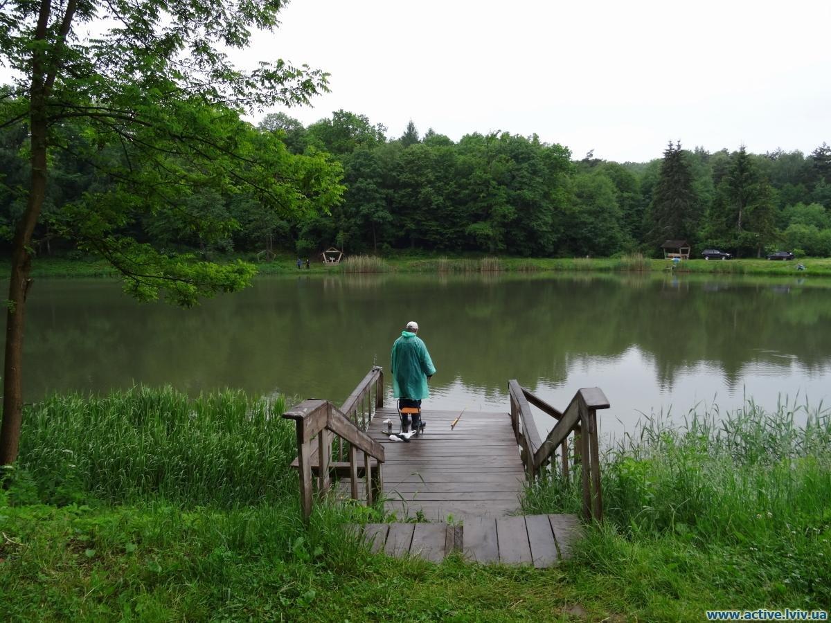 Озеро у Раковець-Новосілка, Фото: active.lviv.ua