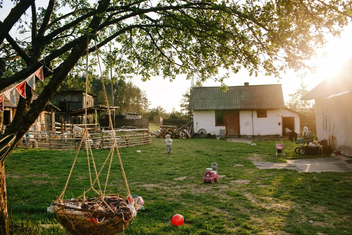 "Екосадиба Маланчаків, Фото: Facebook/""Cozy farm"""