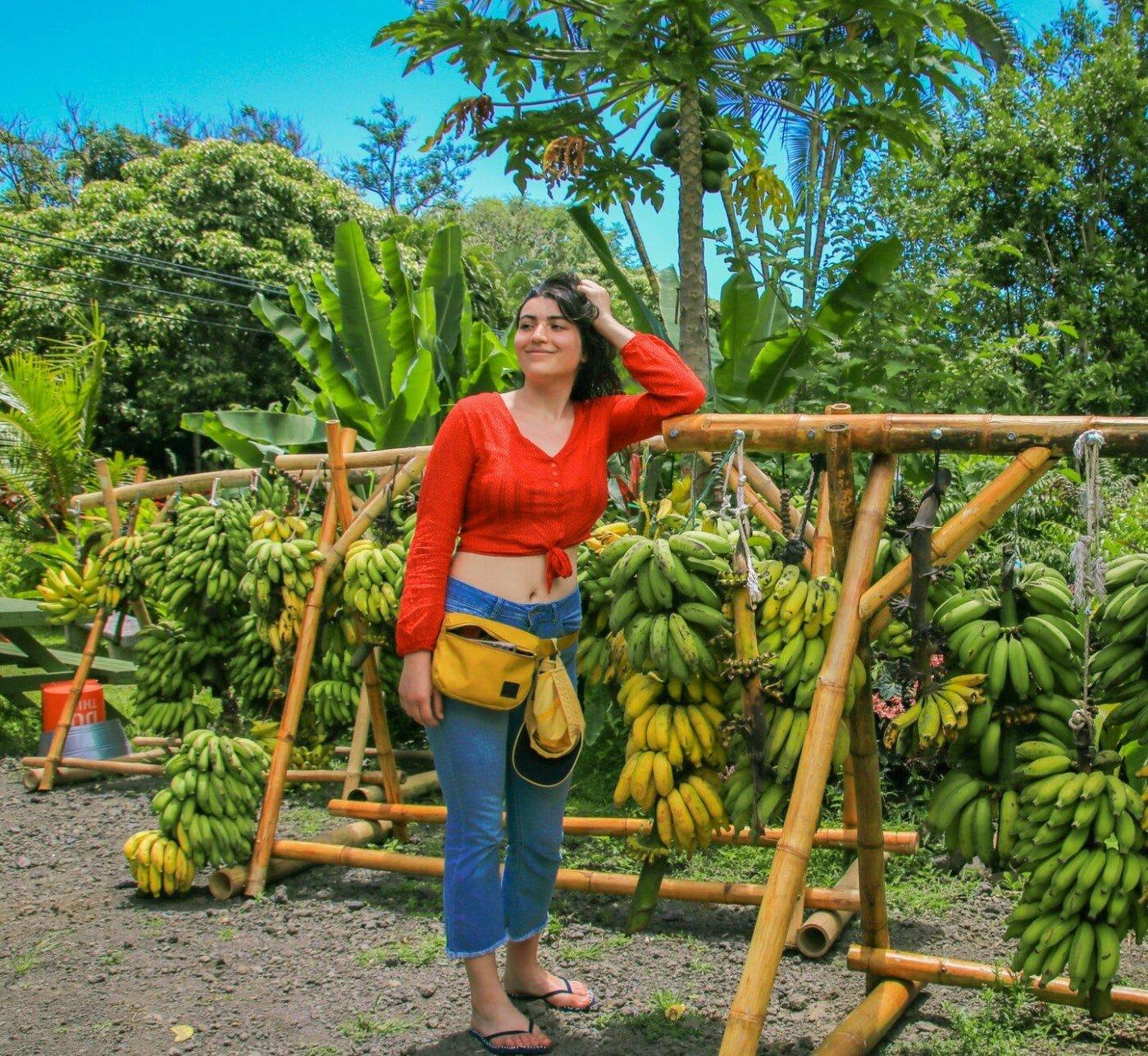 Бананова ферма у селі Липники
